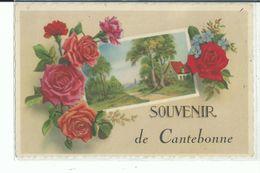54 CANTEBONNE Souvenir De - Other Municipalities