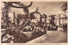 Paquebot Normandie Geneale Transatlantique Le Jardin D'Hiver 1935 - Paquebote