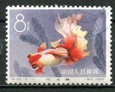 """VR China 1960 Mi.Nr.544 """"Zuchtformen Des Goldfisches,Rotweißes Drachenauge """"1 Wert Used,gestp. - 1949 - ... République Populaire"""