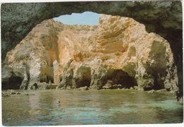 Lagos - Ponta Da Piedade - Algarve - ( Portugal) - Faro