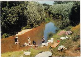 Lavadeiras De Portugal - Blanchisseuses Portugaises / Portugese Country Washerwomen - Portugal