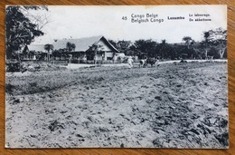 CARTOLINA POSTALE CONGO BELGA  LUSAMBU  ARATURA  VIAGGIATA DA MATADI A ANTWERPEN  BELGIO NEL 1920 - Congo Francese - Altri
