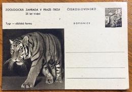 ZOOLOGIA ANIMALI TIGRE SU CARTOLINA POSTALE CECOSLOVACCHIA - Congo Francese - Altri