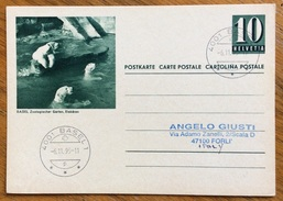 ZOOLOGIA ANIMALI ORSI BIANCHI  SU CARTOLINA POSTALE SUISSE VIAGGIATA 1995 - Congo Francese - Altri