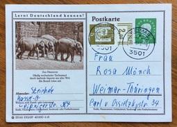 ZOOLOGIA ANIMALI ELEFANTI SU CARTOLINA POSTALE  GERMANIA VIAGGIATA 1963 - Congo Francese - Altri