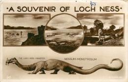MONSTRE DU LOCH NESS - Tierwelt & Fauna