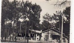 DEPT 40 : édit. Cim N° 22 : Biscarrosse Plage Villas Dans Les Pins - Biscarrosse