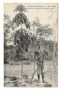 Afrique Occidentale / HAUTE-GUINEE / CHASSEUR ET PLANT DE CAOUTCHOUC ( Beau Fusil ) / Coll. FORTIER  N° 1321 - Guinée Française