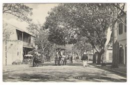 Afrique  Occidentale  /  SENEGAL  /  DAKAR  /  BOULEVARD  NATIONAL  ( Diligence, Calèche ) / Coll. FORTIER  N° 2108 - Guinée Française