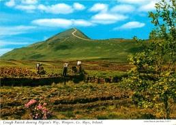 CPSM Ireland-Croagh Patrick Showing Pilgrim's Way,Westport-Mayo            L2397 - Mayo