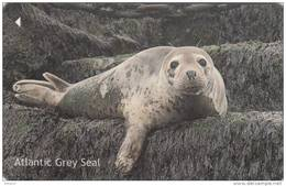 JERSEY ISL. - Seal, CN : 76JERA(normal 0), Used - Zonder Classificatie