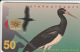 Estonia - Black Stork - Estonia