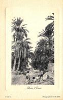 [DC10955] CPA - MAROCCO - DANS L'OASIS - Non Viaggiata - Old Postcard - Marocco