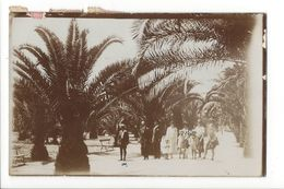 17862 -  Lisboa Lisbonne Carte Photo  Sous Les Palmiers Famille En Promenade - Lisboa