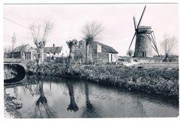 Meetkerke - Grote Molen - Zuienkerke