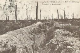 Bataille De Verdun 3723 - Dans Le Bois Des Corbeaux. Tranchees In Ravens Woad - Verdun
