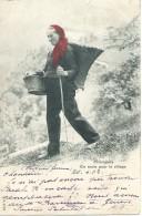 Champéry - En Route Pour Le Village - J.J. 3104 - 1902 - VS Valais
