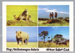 B-928, Kenia, African Safari Club - Kenia