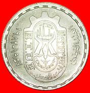 √ PLANTS: EGYPT ★ 10 PIASTRES 1402-1981 UNC MINT LUSTER! LOW START ★ NO RESERVE! - Egitto