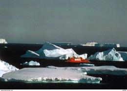 1 AK Antarctica Antarktis Terre Adelie * Astrolabe (französisches Forschungsschiff) Passing Between Icebergs - Ansichtskarten