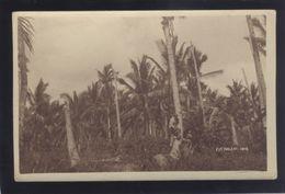 GUAM COCONUT WOOD 1919 OLD POSTCARD - Guam