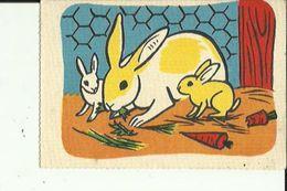 Carte Postale  Dessin D'une Lapine Mangeant Avec Ses Petits En Couleur _Neuve - Autres