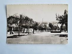 C.P.A. ALGERIE : AIN SEFRA : Place G. Clemenceau, En 1956 - Algérie