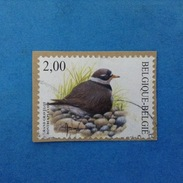 2002 BELGIO BELGIE BELGIQUE FRANCOBOLLO USATO STAMP USED BIRDS FAUNA UCCELLI 2,00 - 1985-.. Uccelli (Buzin)