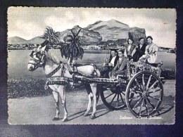 SICILIA -PALERMO -CARRETTO SICILIANO -F.G. LOTTO N°608 - Palermo