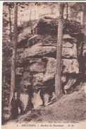 Cp , 88 , BRUYÈRES , Roches De Pointhaie - Bruyeres