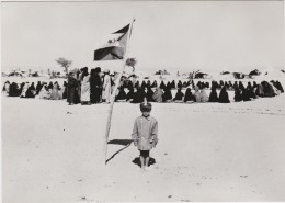 CPM Sahara Occiental - Front Polisario En 1976 (tirage Limité 500 Ex.) - Western Sahara