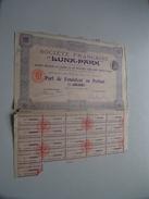 LUNA-PARK ( Paris ) Part De Fondateur Au Porteur N° 52,201 ( For Details See Photo ) !! - Shareholdings