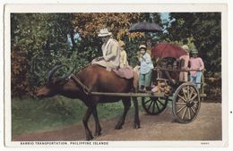 Philippines Barrio Transportation Ox Drawn Cart C1930s Vintage Curt Teich Postcard M8631 - Philippines
