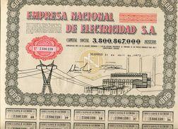 ACCION    Empresa Nacional De Electricas    Con Cupones     - 148 - Electricidad & Gas