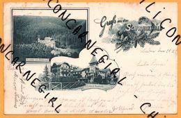 Litho - Gruss Aus Dem Schwarzwald - Curhaus Hundseck - 1899 - Deutschland