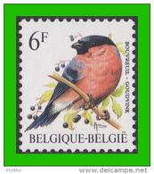 BUZIN - 2295** Bouvreuil / Goudvink - NOVARODE - 1985-.. Oiseaux (Buzin)