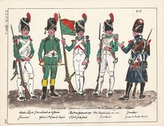 Planche Aquarellee Grenadiers Chasseurs Carabiniers  De La Garde Royale Italienne - Uniforms
