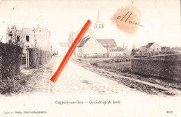 CAPPELLE-AU-BOIS - Gezicht Op De Kerk - Kapelle-op-den-Bos