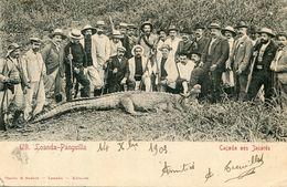 ANGOLA(LOANDA) CHASSE A LA CROCODILE - Angola