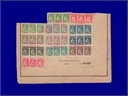 11717 TIMOR - East Timor