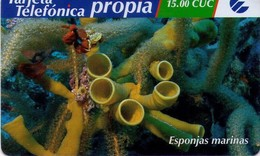 TARJETA TELEFONICA DE CUBA (PREPAGO) (ESPONJAS MARINAS) (284) - Cuba