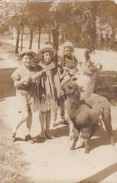 BOYS AND GIRL/NIÑOS Y NIÑA/FILLE ET GARÇONS. LLAMAS. CIRCA 1950S. 9X14CM APROX - BLEUP - Personas Anónimos