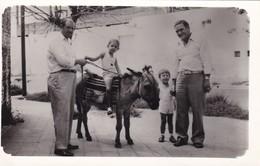 FAMILIA/FAMILY MULA/MULE CIRCA 1940S. 9X14CM APROX - BLEUP - Persone Anonimi