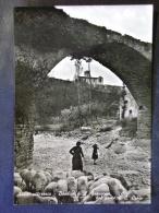 UMBRIA -PERUGIA -ASSISI -LOTTO N°610 - Perugia