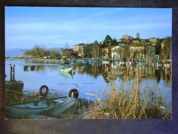 UMBRIA -PERUGIA -SAN FELICIANO -LOTTO N°610 - Perugia