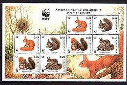 Slovenia 2007 Animals Squirrel (8) MNH - Timbres