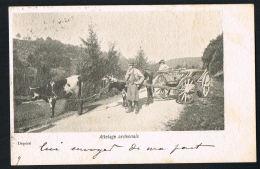 ARDENNES -ATTELAGE  ARDENNAIS-  Animée  - Original CPA Voyagée 1901 - Recto Verso-Paypal Sans Frais - Francia