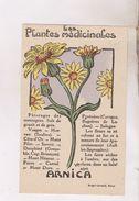 CARTES NON POSTALES PLANTES MEDICINALES, ARNICA - Plantes Médicinales