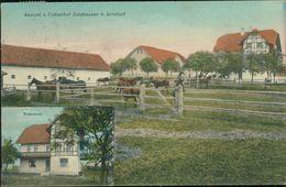 AK Arnstorf, Fohlenhof Gaishausen, Pferde, O 1912, Poststempel Durchgeschlagen, Selten! (24611) - Duitsland