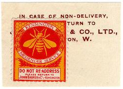 (I.B-CK) Cinderella Collection : Kensington Messenger Service (Bee) - 1902-1951 (Kings)